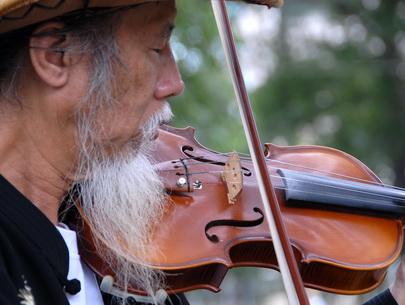 ong violon 1.jpg